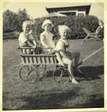 Vores fætre og os i vognen