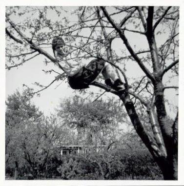 Maria i kirsebærtræet