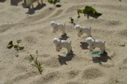De små legetøjslam på sand