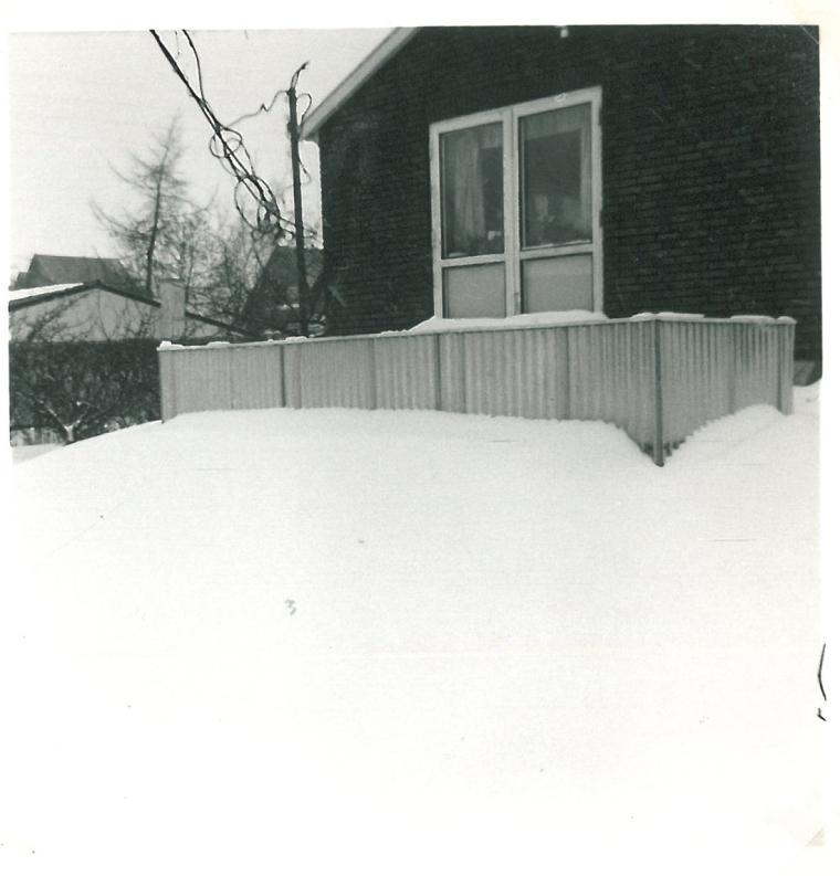 Agerledet 10 i sne