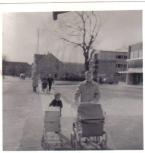 Barnevogn og dukkevogn ved Irma i Herlev i 1950erne. Foto Herlev Lokalarkiv