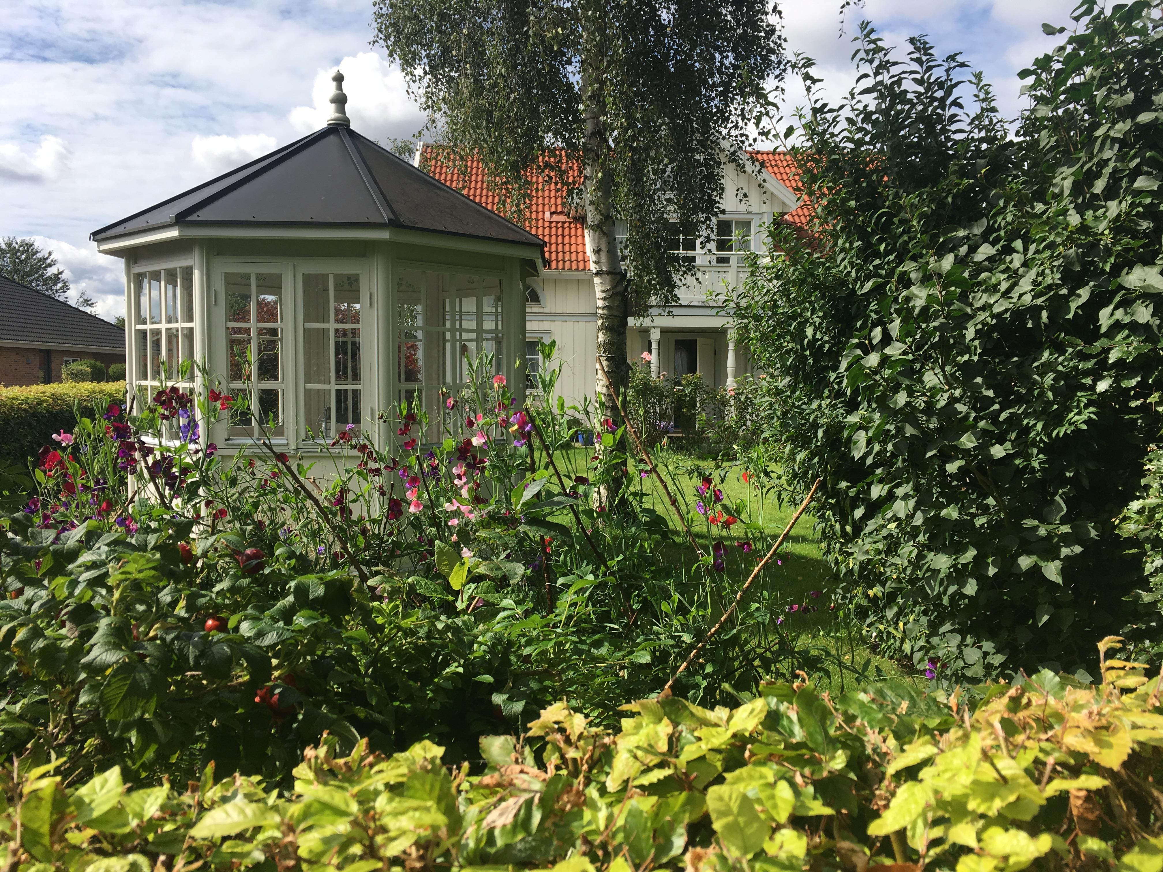 Latyrus i haven