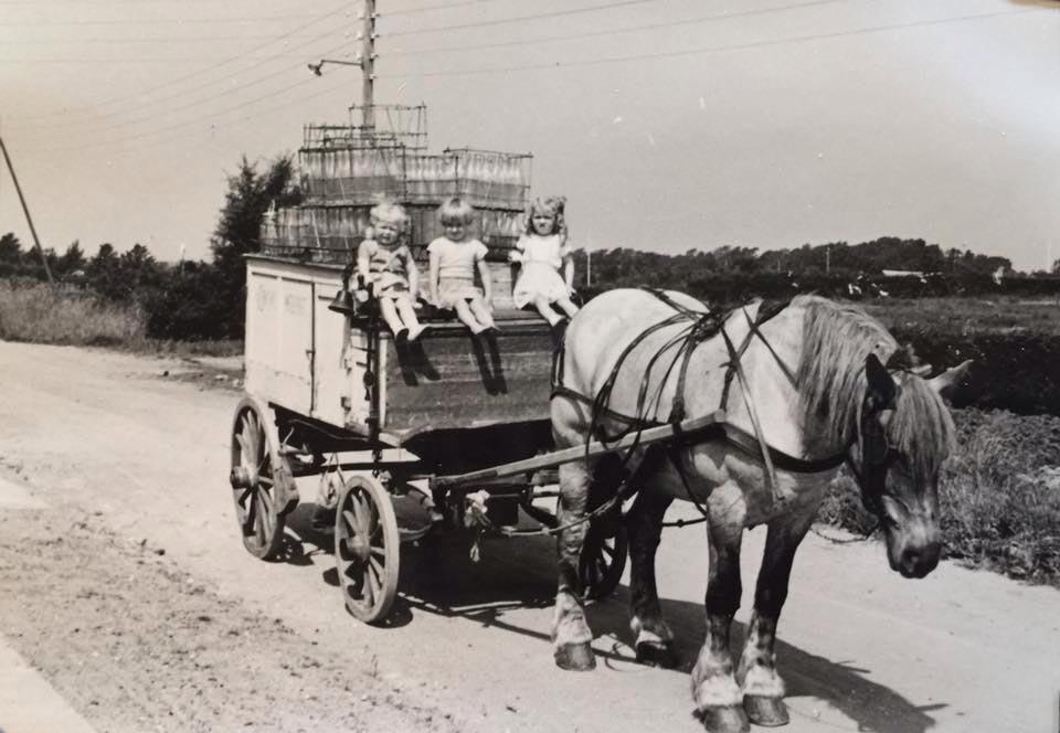 En mælkevogn som den kunne have set ud på Marthavej i Holbæk